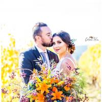 Orange and Blue Winery Wedding